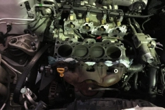 Cylinder Head Removed